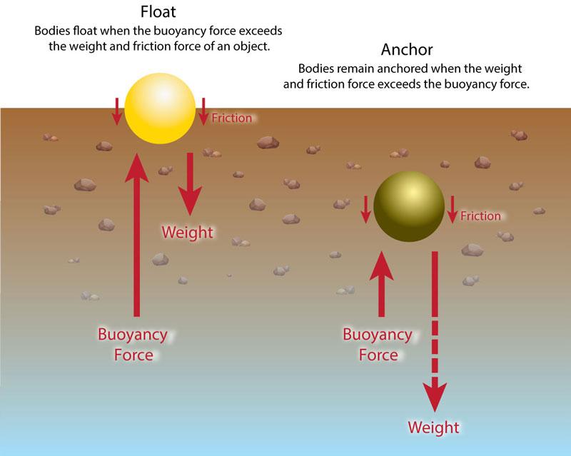 Buoyancy Infographic